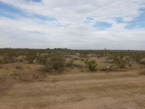 High desert land on the way to La Reforma